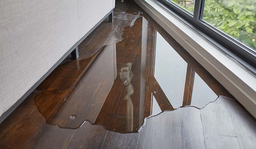 How to Prevent and Avoid Water Damage